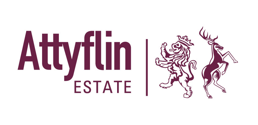 Attyflin Limited
